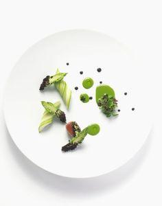 YUSUKE TAKADA - The ChefsTalk Project
