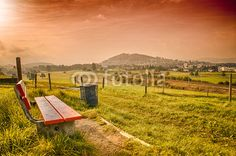 herbstliche Landschaft Vineyard, Landscapes, Country Roads, Nature, Pictures, Outdoor, Photos, Longing For You, Peace