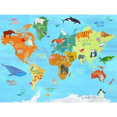 Art Wall Kids, Art For Kids, Banners, World Map Art, D 40, Personalised Canvas, Personalized Items, Animals Of The World, Plans