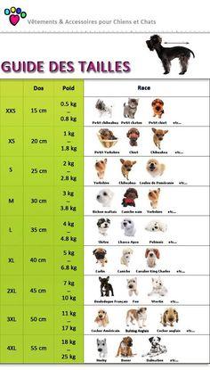 Taille de manteau pour chiens http://amzn.to/2qVpaTc