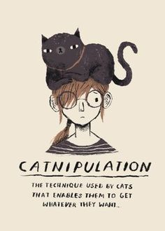 Poster Print, Poster S, Art Print, Crazy Cat Lady, Crazy Cats, I Love Cats, Cool Cats, Gato Origami, Gatos Cats