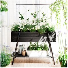 #outdoor #plants #idea #altomindretning #greeninterior