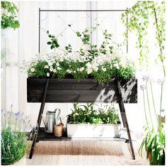 #outdoor #plants #idea #altomindretning #greeninterior