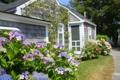 Image result for sconset cottage