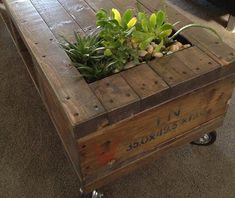 Voor meer informatie over Kamerplanten, net even anders: Ga naar online tuincentrum Bakker.com