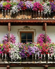 My Enchanted garden dream has shifted a bit, now that I'm living in Italy...3rd floor. Italian balconies