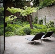 """Truly, madly, deeply in love with this """"unruly jungle"""" garden design ? By Tom Stuart-Smith ? via Truly, madly, deeply in love with this unruly jungle garden design ? By Tom Stuart-Smith ? Tropical Garden Design, Tropical Landscaping, Modern Landscaping, Garden Landscaping, Urban Garden Design, Inexpensive Landscaping, Tropical Gardens, Garden Pool, Green Garden"""