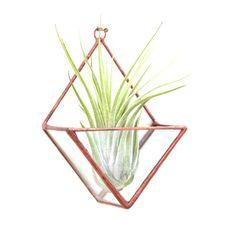 Plantador de vidrieras geométricas diamante terrario colgante