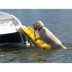 The PAWS Aboard Doggy Pontoon Boat Ladder provides a great way for you to enjoy the water with your pet. It provides an easy exit, so your pet reduces the risk of seriously straining or injuring joint