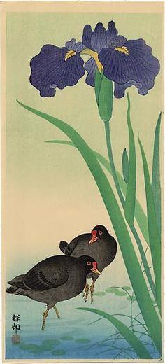 hanga gallery . . . torii gallery: Moorhens and Iris by Ohara Koson