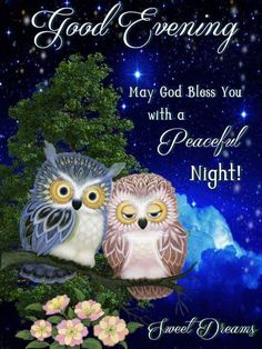 May God Bless You With A Peaceful Night night good night good evening good night pics good night sayings peaceful night quotes Cute Good Night, Good Night Sweet Dreams, Good Night Image, Good Night Quotes, Good Morning Good Night, Good Evening Messages, Good Evening Greetings, Good Evening Wishes, Good Night Wishes