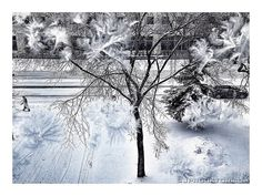 Alberta Prairie Winter 2 by JProcktorPhotography on Etsy Canada, Abstract, Winter, Artwork, Etsy, Outdoor, Winter Time, Outdoors, Work Of Art