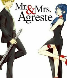 Miraculous Ladybug and Chat Noir.... Mr. & Mrs. Agreste