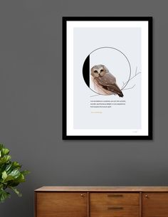 Discover «O for Owl», Exclusive Edition Fine Art Print by Diana Hlevnjak - From $25 - Curioos