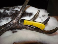 """RKW Design 1003: Camel bone handles and high polished stainless steel coupled with loving fine workmanship make this 3"""" folding knife a one of a kind. This is the knife I carry every day. It's relatively light weight, completely durable and is very sharp. It is in my opinion a perfect working man's knife. POR"""