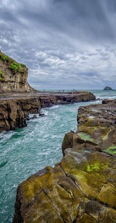 Exploring on Muriwai Surf Beach - Waimauku, North Island, New Zealand