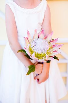 Beautiful blush protea: http://www.stylemepretty.com/2015/08/28/spotted-in-the-vault-this-week-blush-pink-protea/