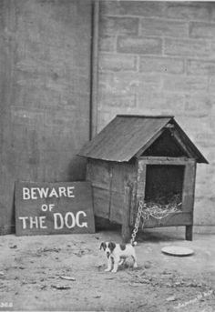 Vintage 'beware of the dog'