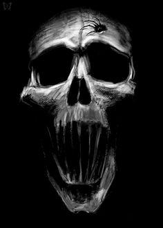 whitesoulblackheart: Spider Skull - Spiral Direct © (Please leave credit … Ƹ̴Ӂ̴Ʒ)