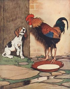 Dog and rooster conversing Postcards, Greetings Cards, Art Prints, Canvas, Framed Pictures & Wall Art by Corbis