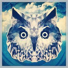 owl by Dylan Casasnovas