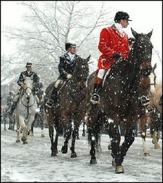 [fox-hunt-snow.jpg.jpg]