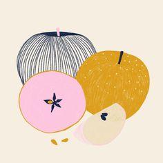 Marisol Ortega — Fruit & Line Series Art And Illustration, Food Illustrations, Botanical Illustration, Invisible Creature, Fruit Painting, Colorful Fruit, Art Plastique, Art Inspo, Art Paintings