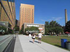 Treehouse. MassArt Student Residence Hall. Boston.