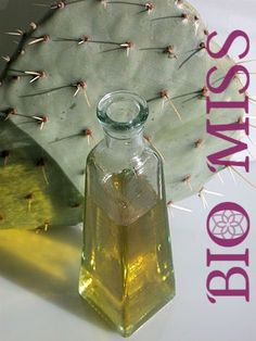 argan, bio miss,benefits of Prickly Pear Seed Oil, organic, natural, skin care, organic product, cactus oil, argan oil, prickly pear seed oil, skin care, hair care vegan beaty, cruelty free beaty , green beauty,biomiss