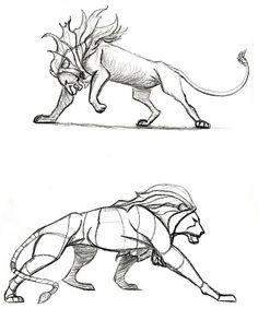 Illustration & Web comics: Lion sketches