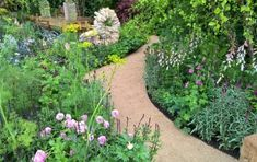 The EverEdge Classic Range - EverEdge - flexible metal garden edging and steel raised beds. Ideal for lawns, landscape gardens, paths, flower beds and vegetable growing
