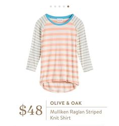 Stitch Fix: Olive & Oak Mulliken Raglan Striped Knit Shirt - Love the casual ease of this shirt and the pretty pastel colors