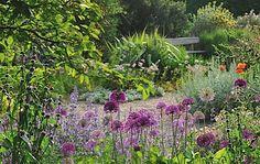 Gravel Garden Beth Chatto