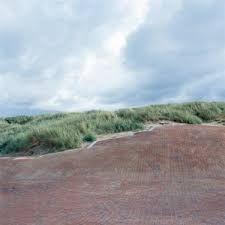 Billedresultat for schønherr hvide sande