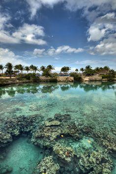 ✮ Chankanaab Lagoon - Cozumel