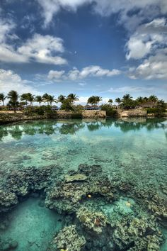 Chankanaab Lagoon ~ Isla Cozumel, Yucatán Peninsula, México (photo by Brad Granger, Wenatchee, Washington)....