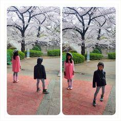 My #kodomo #akirastyle #osaka #osakacastle #kidstyle #pose #sakura #japan #travel #pupuru #japantravel #wifirental