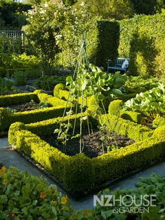 Potager - NZ House & Garden - 2 sisters