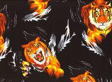 Tigers Rwarr Black
