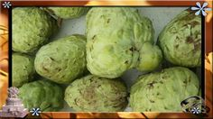 The atemoya, Annona × atemoya, is a hybrid of two fruits – the sugar-apple (Annona squamosa) and the cherimoya (A. Sprouts, Apple, Fruit, Vegetables, Food, Apple Fruit, Meal, Veggies, Essen