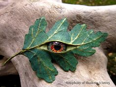 Green Man Green Woman. Glass eyed Hawthorn leaf by AWhisperofTrees