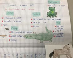 Gli animali, classe seconda – Maestra Mihaela Montessori, Grid, Bullet Journal, Science, Mamma, Blog, Studio, Geography, Alphabet