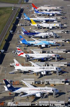 ⇝Paine Field, WA, 12 Sept. 2013 | Line up of eight Boeing 787-8 Dreamliners for 8 different airlines in different stages of testing as they get prepared for delivery. Also in view is the first Boeing 787-9 being prepared for its first test flight which occurred on 17 September 2013.
