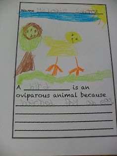 .: Oviparous Animal Week
