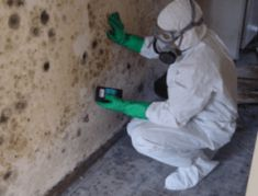 Pintail D&C Inc. is an affordable mold removal company, offering the best services in Katy TX. Call us to know about our water damage services and mold removal service. Septic Inspection, Mold Cleanup, Wet Basement, Flooded Basement, Water Flood, Cleaning Mold, Emergency Water, Get Rid Of Mold, Flood Damage