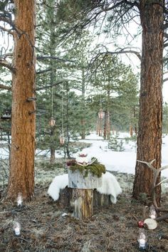 Check out this swoon-worthy winter woodland styled engagement shoot! You are going to love the beautiful location and perfectly styled details! Wedding Rustic, Autumn Wedding, Christmas Wedding Themes, Engagement Shoots, Winter Wonderland, Ladder Decor, Woodland, Craft, Plants