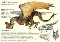 Neck finned wyverrn ref by JekJekyll.deviantart.com on @DeviantArt(not my creative property)