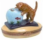 Getting into trouble.... #kitten #porcelain #fishbowl