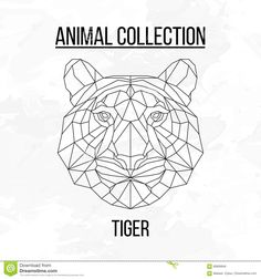 Geometric Tiger Head Stock Vector - Image: 69906846
