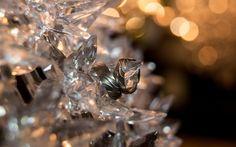Trauringe | Claudia Pelny Fotografie, Hochzeitsfotografie Wedding Details, Jewelry, Wedding Anniversary, Wedding Photography, Jewels, Schmuck, Jewerly, Jewelery, Jewlery